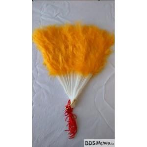 Vějíř žlutý